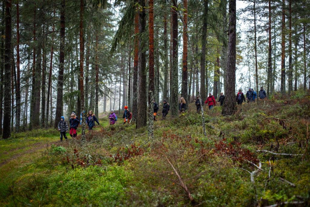 Scouter på rad i skog. Värmlandstramp 2019