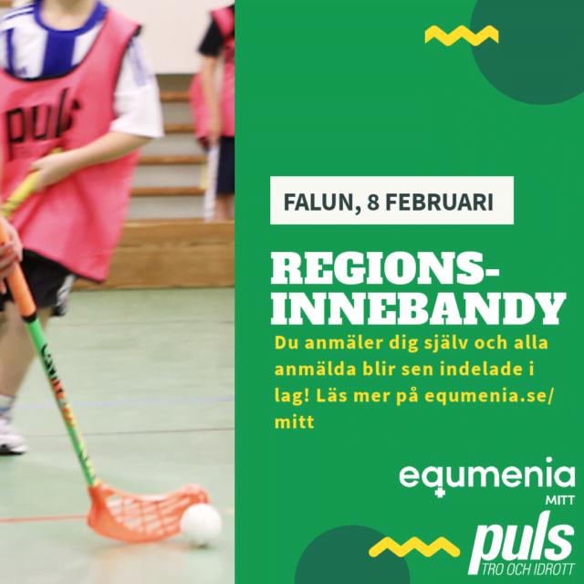 Regionsinnebandy 8 februari