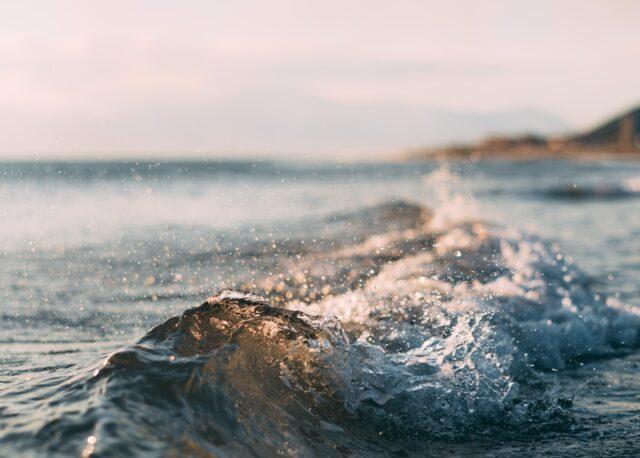 Vågor i kustmiljö