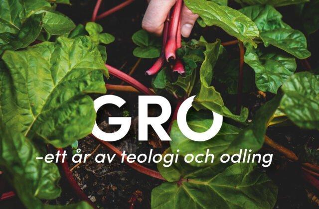 Gro – ett år av teologi och odling